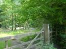 Walking near Dunscombe